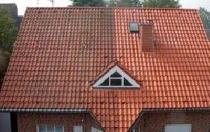 Dachreinigung   Dachrinnenreinigung   Dachrinne abdichten   Dachsanierung